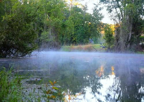 mist lake fog pond florida