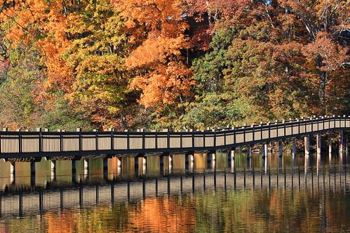 bridge autumn trees lake fall leaves reflections footbridge northcarolina lakejunaluska waynesville junaluska turbeville haywoodcounty img4394212345 santapleasebringmeawideanglelens