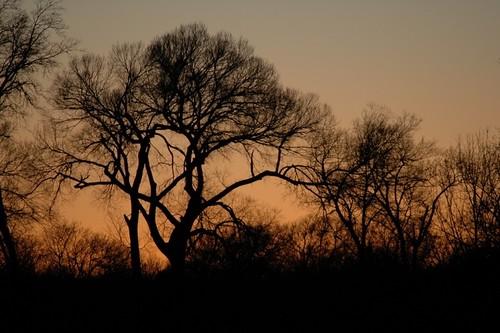 sunset usa texas mckinney
