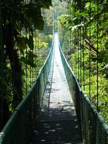 Selvatura Park - hanging bridges -2