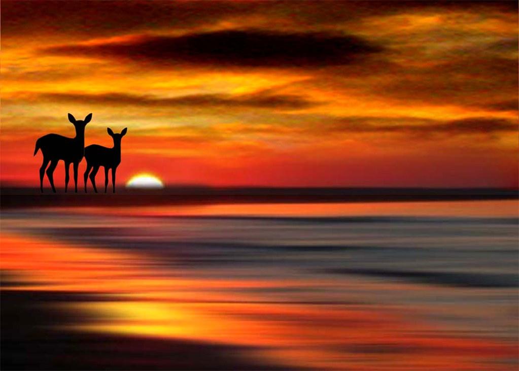 Sunset point 9
