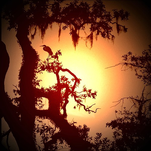 sunset sc 4s iphone 645pro lomob fxphotostudio snapseed