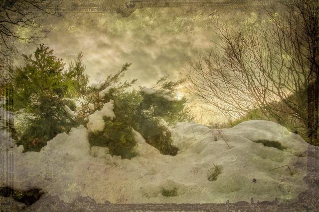 nieve sobre araia 1