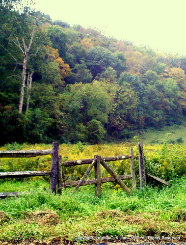 old autumn sunset fall abandoned nature field automne wooden gate afternoon pennsylvania herbst pa pasture forgotten weathered autunno lehighvalley dilapidated goldenhour otono northamptoncounty slatebelt lowermtbetheltownship garrroad
