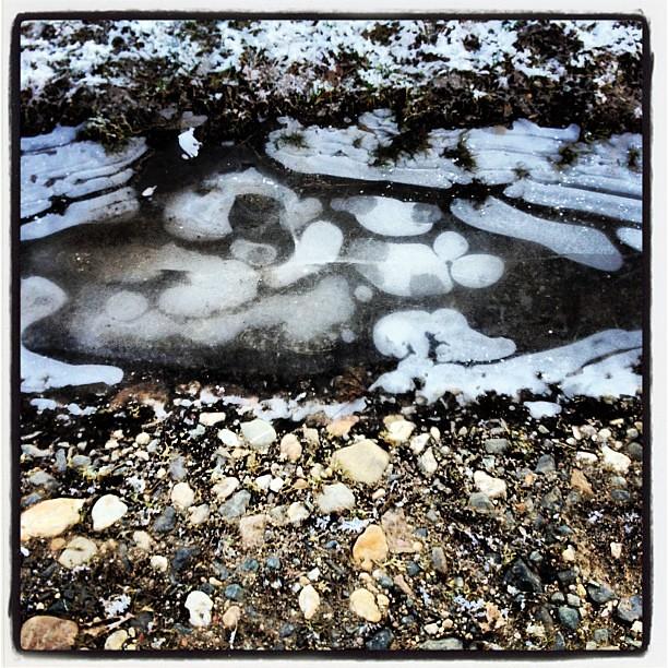 Struktur des Winters