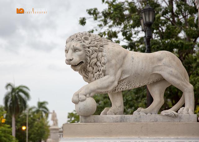 Benvenuti nel parque Central Cienfuegos