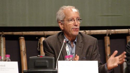 WWViews at COP11 - Side Event - Rick Worthington