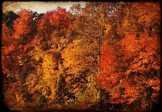 On the way to Rhinebeck | by WoodlandSprite