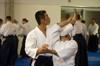 _DSC3345.jpg   by aikido forum kishintai
