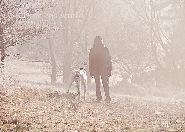 Misty dog walk