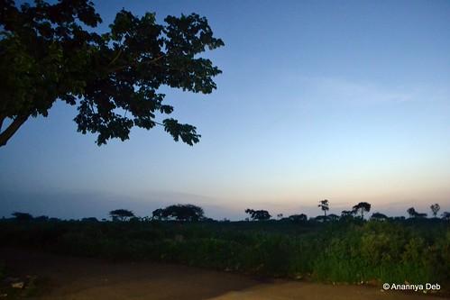 sunrise dawn journeys