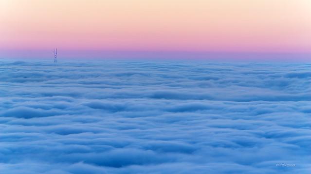 Morning fog - Berkeley Hill