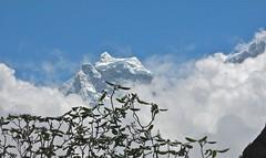 Ama Dablam, the summit glacier.