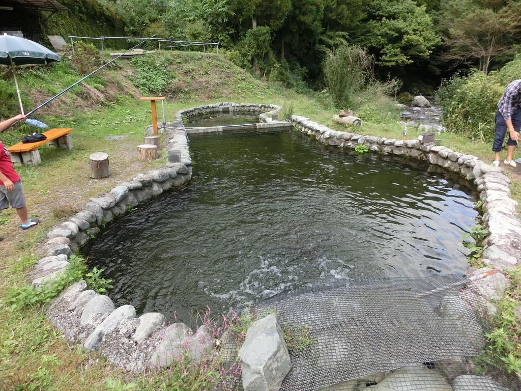ファーム 秋川 トラウト