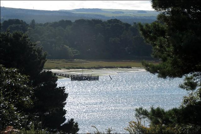 Furzey Island