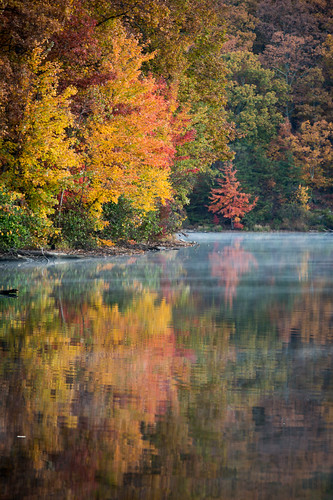 autumn trees mist lake fall forest sunrise maryland greenbrierstatepark 1210216518