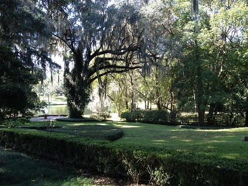 trees house brick home architecture landscape pond backyard florida historic decor frontyard ocala
