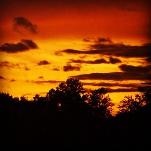 trees light sunset summer sky clouds rural michigan aug eav 2012 mattslens statigram eavig instacanvas uploaded:by=flickstagram instagram:photo=25388510735689854639420