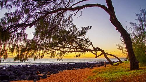 sunrise silouette beach tropical