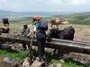 Žízeň byla, kolem krávy, ale voda z potrubí pitná, foto: Petr Nejedlý