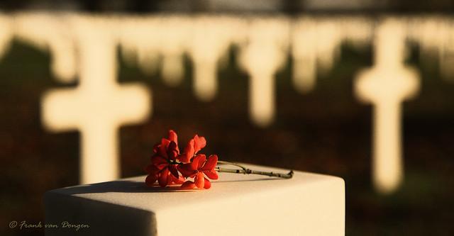 Not Forgotten -  WW II  +   9/11