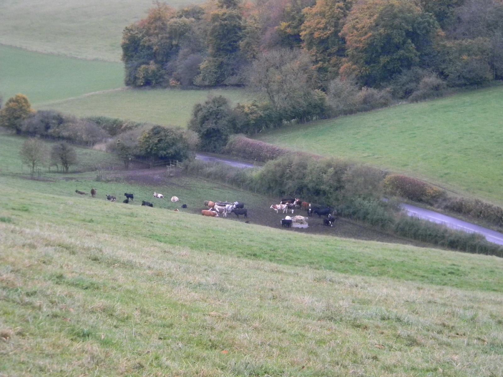 Bryants Bottom Princes Risborough to Great Missenden