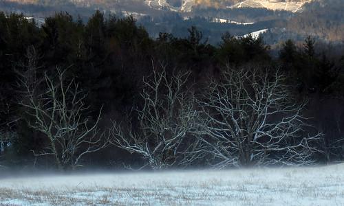 landscape northcarolina blueridgeparkway westernnorthcarolina southernappalachians mountjeffersonoverlook canonpowershotsx40hs
