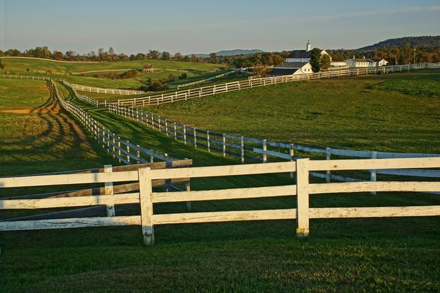 Western Albemarle Farm