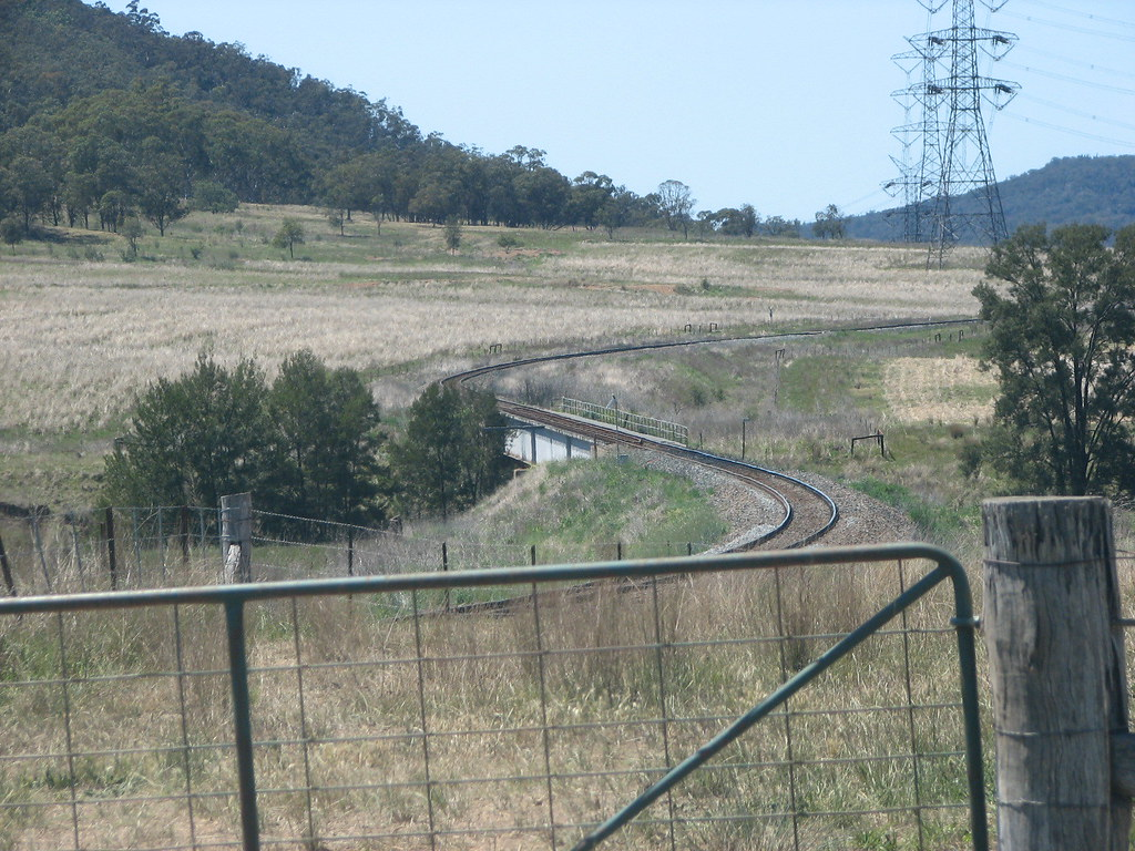 Oct.2012.-Me,Hunter Valley Trains.sheep,Pothana 015 by DAVE INNIS