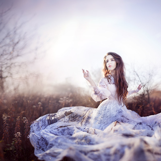 Fluttering Dreams