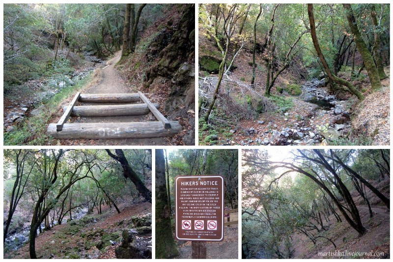 San Jose_Alum Rock Park (30)