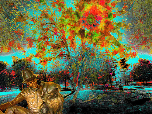 new autumn england dog man color tree fall photoshop flickr twinkle hampshire bloom flowering rare up look real yahoo google image photographers manipulation it national montage getty geographic bing direct facebook stumbleupon daum interesting creative surreal avant guarde pinterest tumbler tinder unique unusual fascinating life art outside