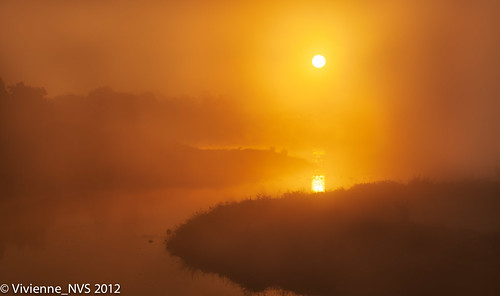 autumn mist lake fog sunrise illinois frost preserves lakecounty independencegrove foggyscenes lcfpd