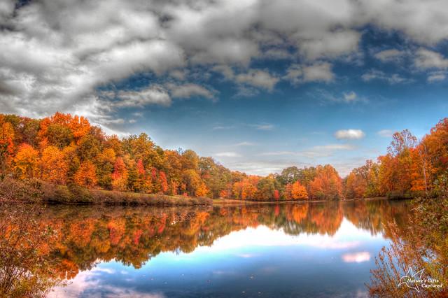 Fall 2012_NJ