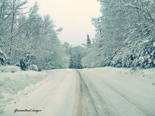 winter snow landscape quebec country january snowscape