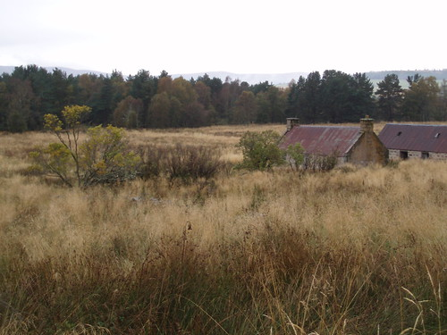 P15 Abandoned farm with garden remains