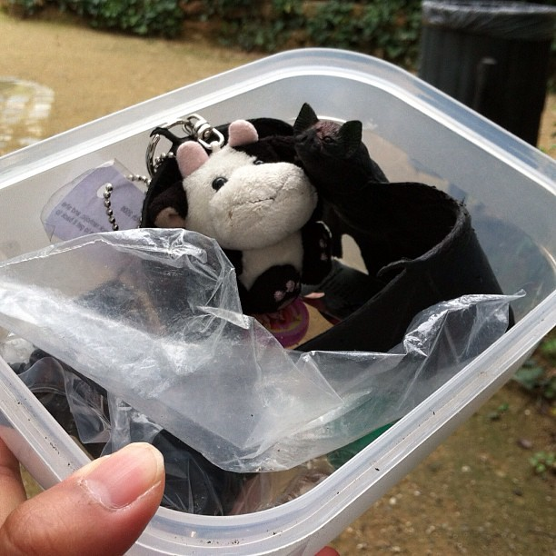 #kvpspain : Making friends in #barcelona ! #geocache adventure with cow trackable