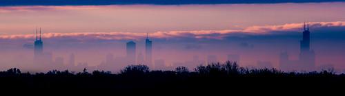 autumn trees panorama distortion chicago hancockbuilding fall silhouette skyline clouds buildings geese haze shadows pano searstower shapes pinksky pinkclouds 2x cloudlayer 5dmarkii willistower 70200mmii