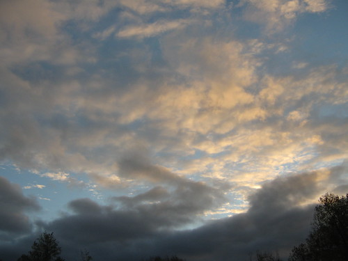 trees sky clouds sunrise landscape kansas fortriley