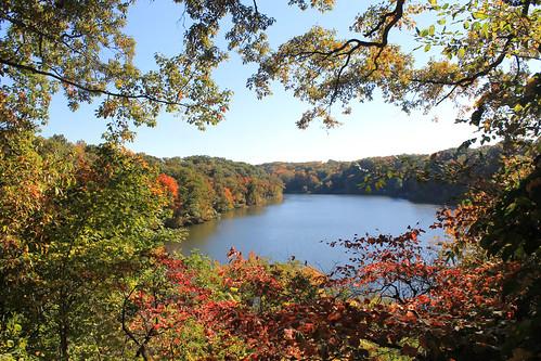 blue fall garden glacier fallfoliage foliage millcreek youngstown millcreekpark mahoningvalley mahoningcounty lakeglacier fellowsriversidegarden millcreekmetropark