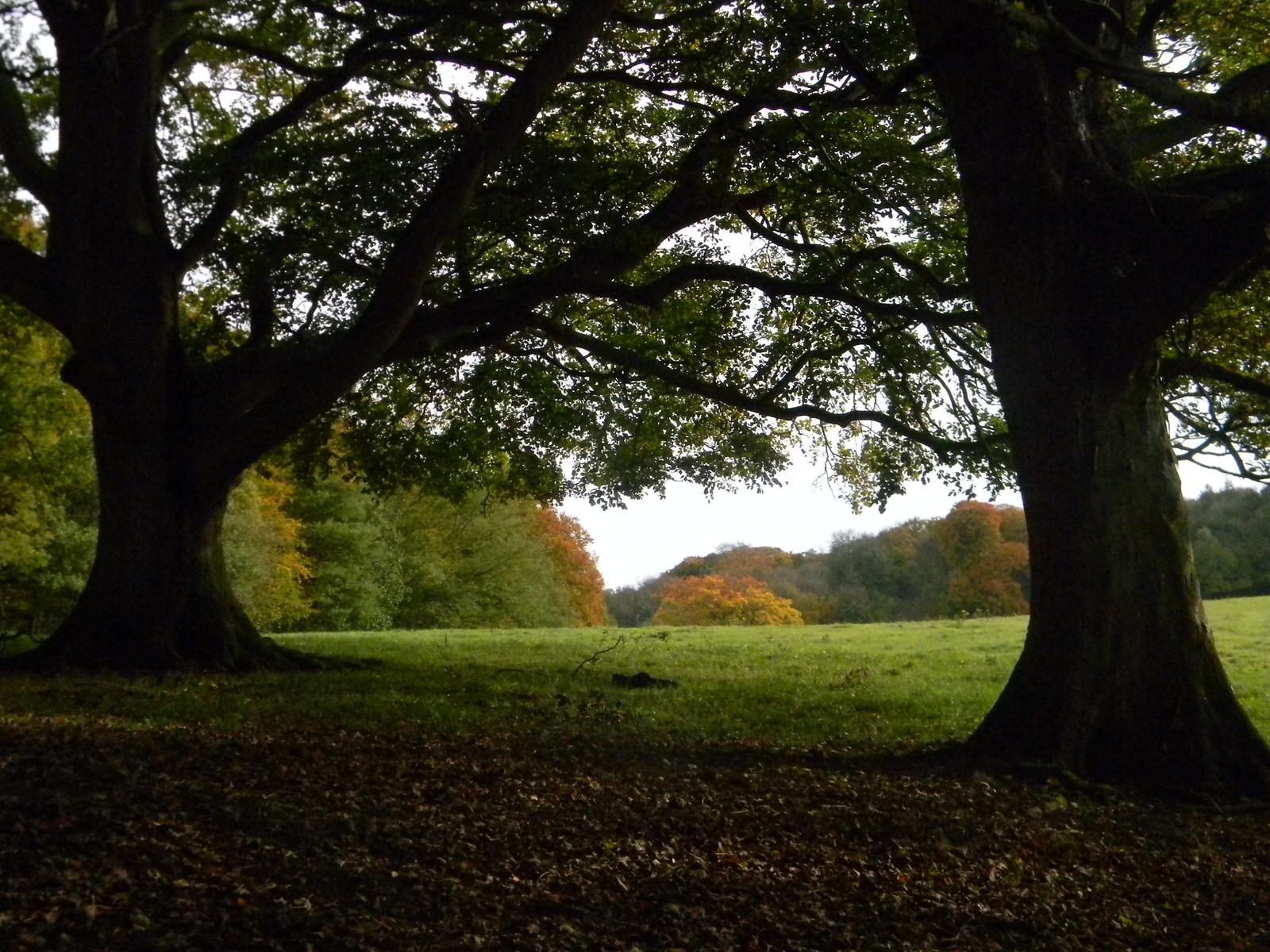 Autumn a-comin' Wendover Circular