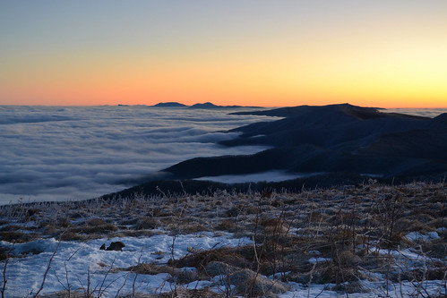 snow ice grass fog clouds sunrise bald blueridge roanmountain
