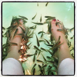 "This is happening. Do you see that ""Dr. Fish"" in between my toes? DO YOU SEE IT?? 