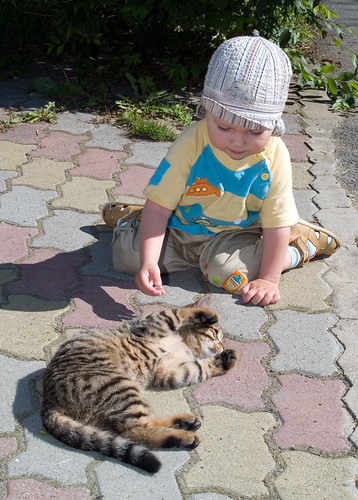 one year boy plaing with cat