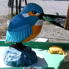 #6019 common kingfisher (カワセミ)
