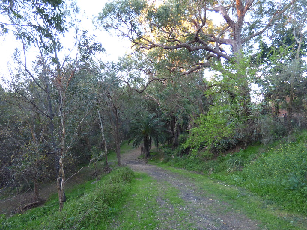 Backhouse Reserve, Old Toongabbie, NSW