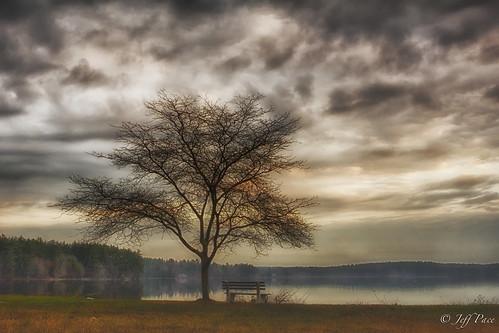 autumn lake tree clouds sunrise bench