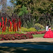 12878 The Quinceañera, Chihuly Exhibit, Dallas Arboretum,Tx
