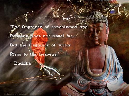 Buddha Quote 104 | by h.koppdelaney