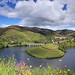 The winding Tedo river surrounded by terraced vineyards by B℮n